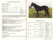 Rookery-hill-90